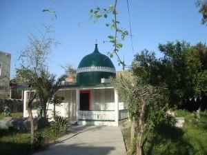 Sheikh_Akhund_Adyan_seljoki_(1)